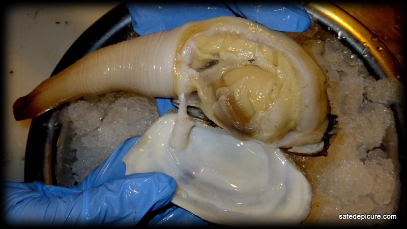 Removing Shell from Geoduck
