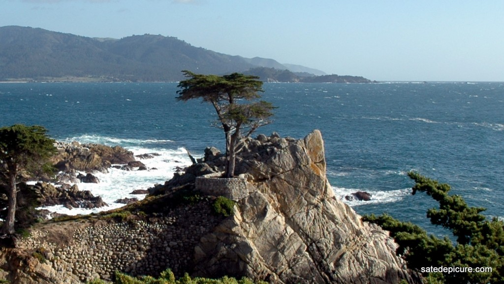 My Exploration Of Pebble Beach California Had To Include A